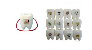 メモリーボックス2ツー (抜去歯牙入れケース)の写真
