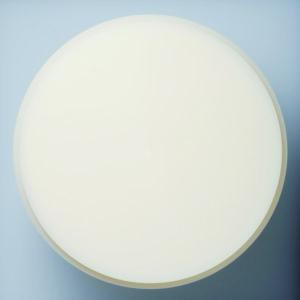 レジンディスクの写真